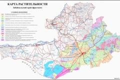 Даурский участок Геоботаническая карта_1